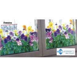 film décoratif fleurs (Pensées)