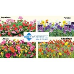 film décoratif fleurs