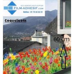 film décoratif fleurs coquelicots